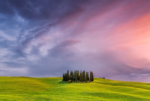 Cypresses_sunset_Tuscany_Italy