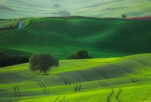 Val_d_Orcia_Tuscany_Italy