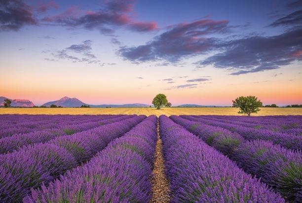 Provence France Photo Tour