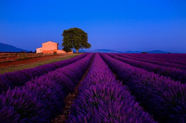 Provence | France