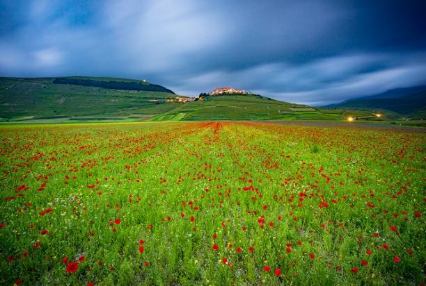 Colorful_Fields_Castelluccio_Piano_Grande_Umbria_italy