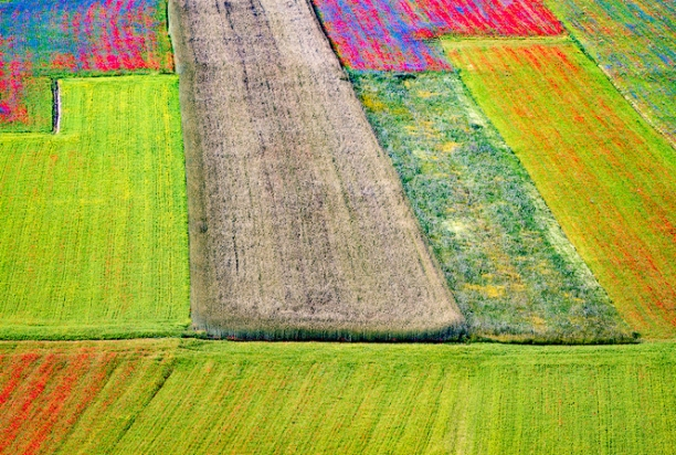 Colorful_Fields_Patchwork_Piano_Grande_Umbria_Italy
