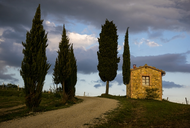 Cypress_Trees_Stone_House_Chianti_Italy