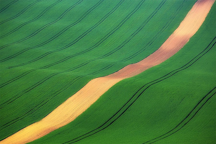 green-field_moravia_czech-republic