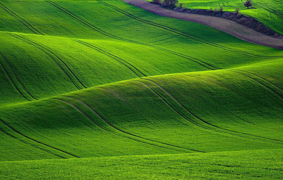 rolling-hills_moravia_czech-republic