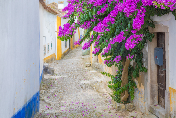 obidos, portugal photo tour