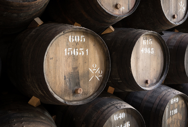 Port wine barrels, portugal photo tour