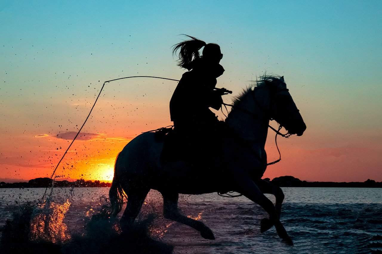France_Provence_Camargue_horse-and-rider-at-sunset_2018